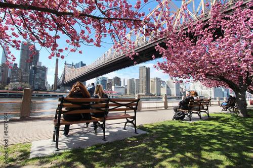 Zdjęcia na płótnie, fototapety, obrazy : New York City / Roosevelt Island