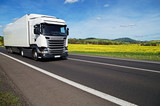 Fototapety White truck on the road between yellow flowering rapeseed field