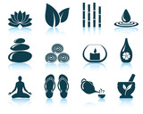 Fototapety Set of spa icons