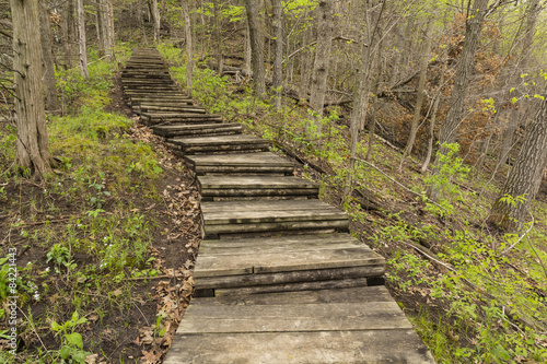 Fototapeta Step Trail In Woods During Spring