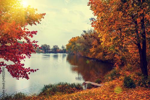 Obraz Rural landscape at sunset. Lake in autumn
