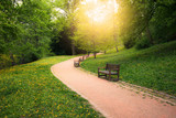 Summer park at sunny day - 84360618