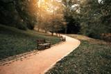 Park walkway - 84360691