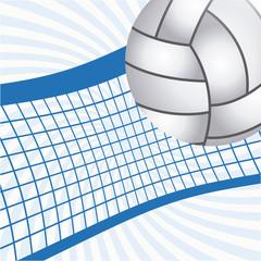 volleyball emblem design