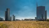 campo di grano a Milano