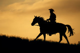 A silhouette of a cowboy and horse walking up a meadow with an  orange and yellow background sky.