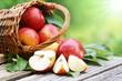 Leinwanddruck Bild - Äpfel im Körbchen mit Sonne, copy space