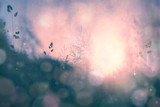Fantasy sunset bokeh blurred meadow background