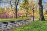 Fototapety Central Park, New York City