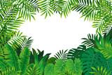 熱帯雨林 - 84567820