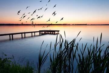 Sommerabend © Jenny Sturm
