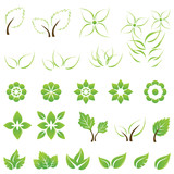 Set of green leaf and flower design elements