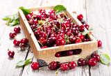 Fototapeta fresh cherries