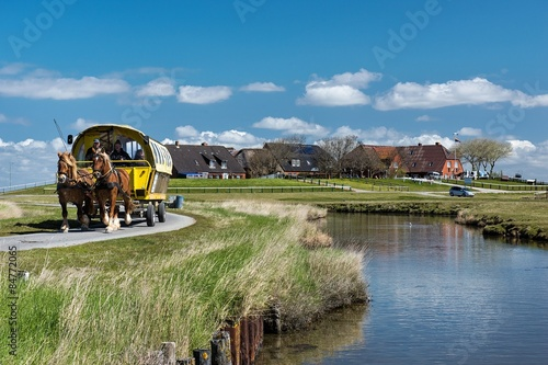 Foto op Canvas Noordzee Pferdegespann auf einer Hallig
