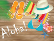 Quadro Aloha Beach accessories on wood background