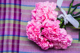 pink carnation floral on violate cloth background poster