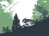 Fototapety Panoramic forest landscape with silhouettes of trees