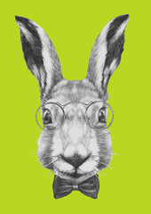 Original drawing of Rabbit with glasses and bow tie. Isolated on colored background