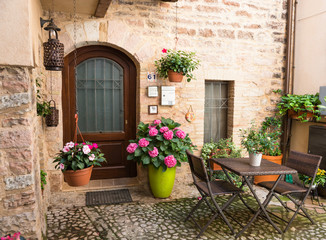 Cerca immagini vasi di fiori for Piante di case