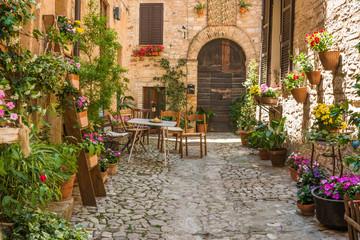 Fototapeta romantyczny dom z meblami ogrodowymi i doniczek