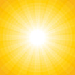 yellow background with a white sun with rays and circles