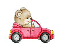 Miś w samochodzie