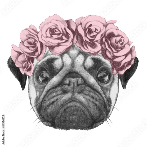 Fototapeta Original drawing of Pug Dog with floral head wreath. Isolated on white background