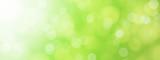 green blurred bokeh background illustration - 85051855