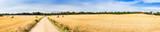 Fototapeta Straw field panorama