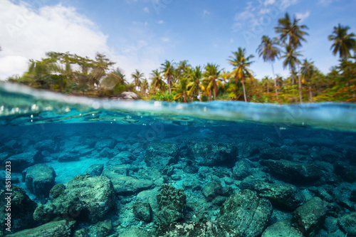 Underwater split shot of the sea rocky bottom