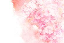 "Постер, картина, фотообои ""Flower watercolor illustration."""