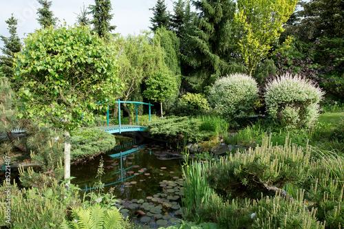 Fototapeta small green footbridge over a pond