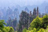 Fototapeta scene of rock mountain in Zhangjiajie National Forest Park,Hunan