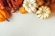 Squash & Autumn Foliage Thanksgiving and fall theme background