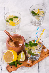 Fresh homemade lemon and lime lemonade served with mint, ice cubes