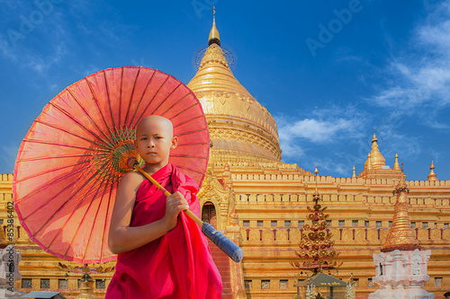 Poster Little novive and golden pagoda