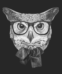 Hand drawn portrait of Owl with glasses and bow. Vector isolated elements.