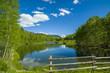 Cushman Lake Spring Afternoon