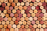 Fototapety Wall of Wine Corks