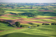Wheat fields in Palouse Washington state