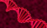 DNA chain. 3d.
