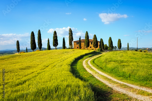 Zdjęcia na płótnie, fototapety na wymiar, obrazy na ścianę : Tuscany, farmland, cypress trees and white road on sunset. Siena