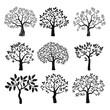 Obrazy na płótnie, fototapety, zdjęcia, fotoobrazy drukowane : Set of black vector trees.