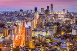 Fototapeta Tokyo, Japan Cityscape towards Shinjuku Ward