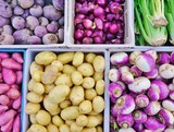 Fototapety Fresh purple root vegetables at a French farmers' market