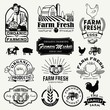 Retro Farm Fresh labels, logos, badges, icons, objects and elements.