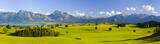 Fototapety Panorama Landschaft in Bayern mit Alpen, Berge und Wiesen im Allgäu