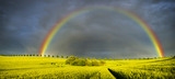 Fototapety Spring colorful rainbow over the field after passing rainstorm