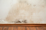 Black mould buildup in the corner of an old house