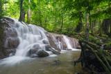 Fototapeta beautiful waterfall in forest